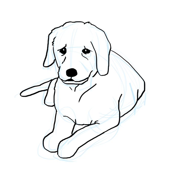 how to draw a dog with the word dog